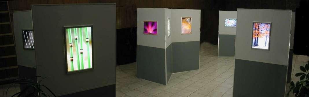 Kép a kiállításról
