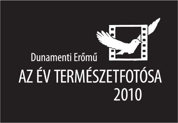 etf2010.jpg