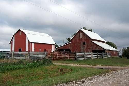 farm-photocwwycoff-flickr.jpg
