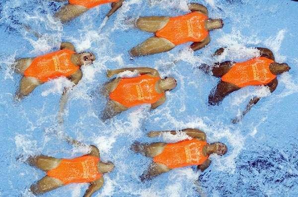 syncswimmerscolombia-finawc-photodavidgrayreuters.jpg