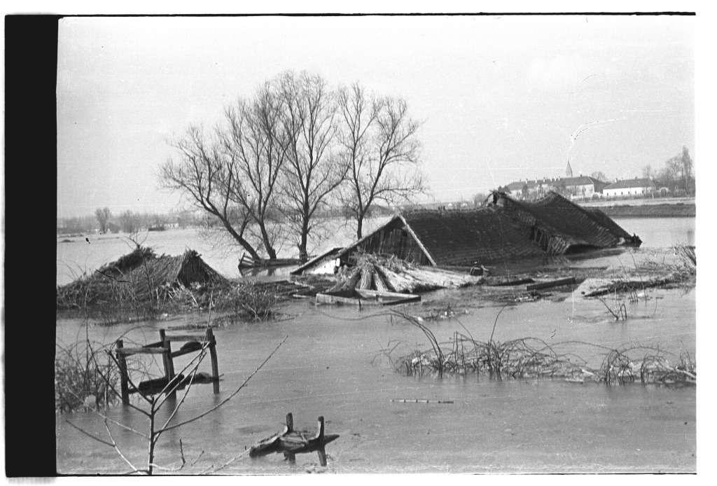 Bérci László: Árad a Duna és a Sugovica 1956