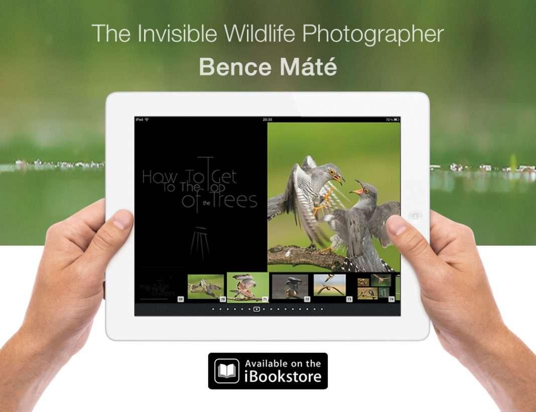 Máté Bence első interaktív könyve iPadre
