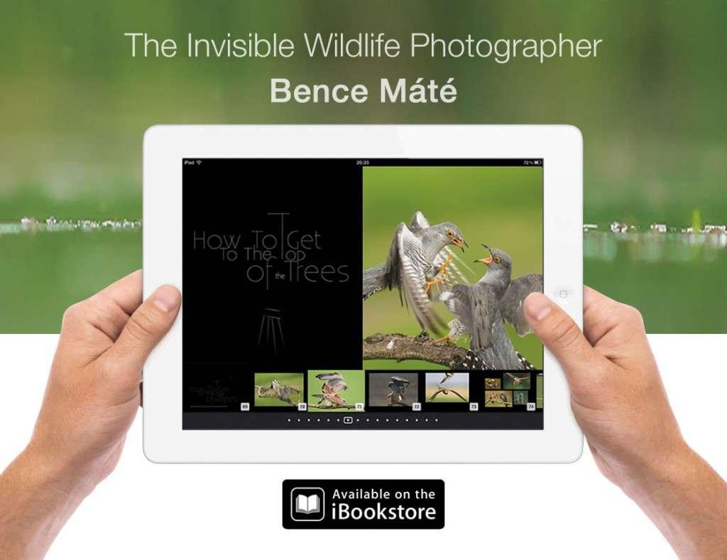 bencemate-invisiblewildlifephotographer-ipadbook-promo.jpg