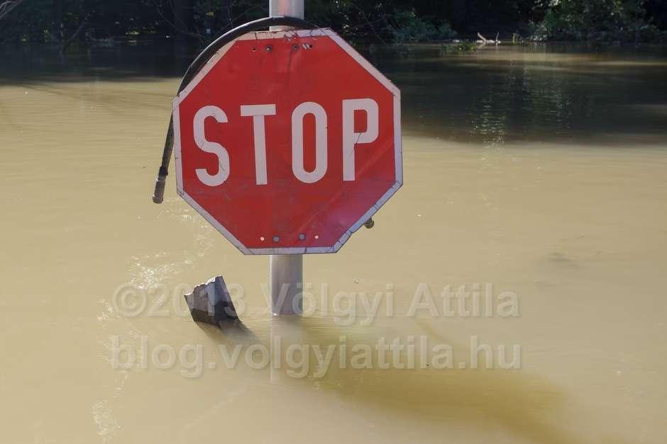 stop-sign-flooded-gemenc-forest-1306143078h-photosvolgyiattilahu.jpg
