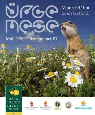 ÜRGE MESE – Vincze Bálint természetfotói: a Magyar Természettudományi Múzeum kiállításának megnyitója
