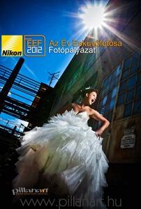 Nikon Az Ev Eskuvofotosa 2012 Plakat Web Small