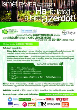 Bayer Palyazati Edm Final Small