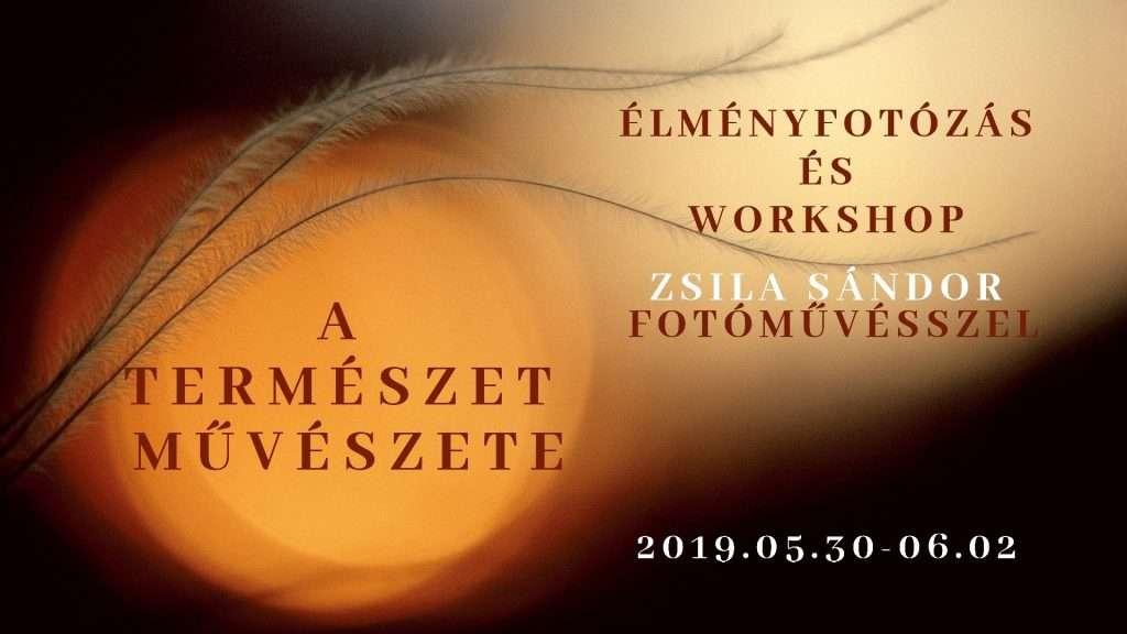 Workshop természetfotót szerető amatőrök számára