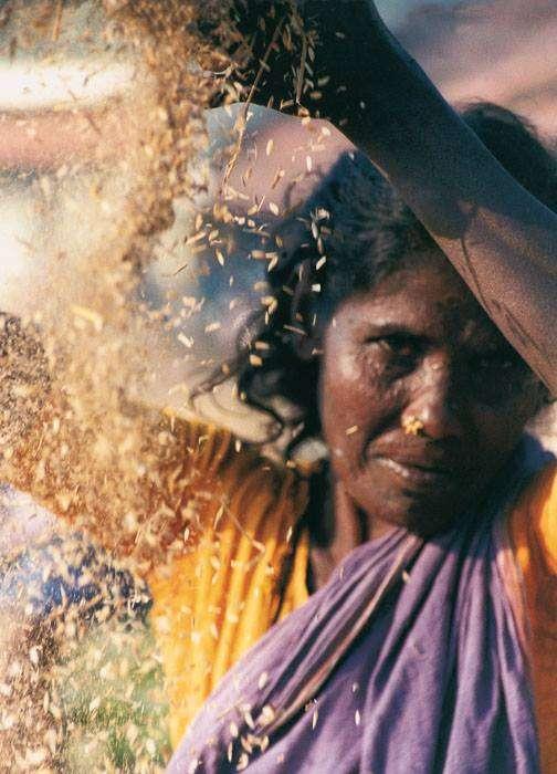Sára Sándor – India, a szépség koldusa