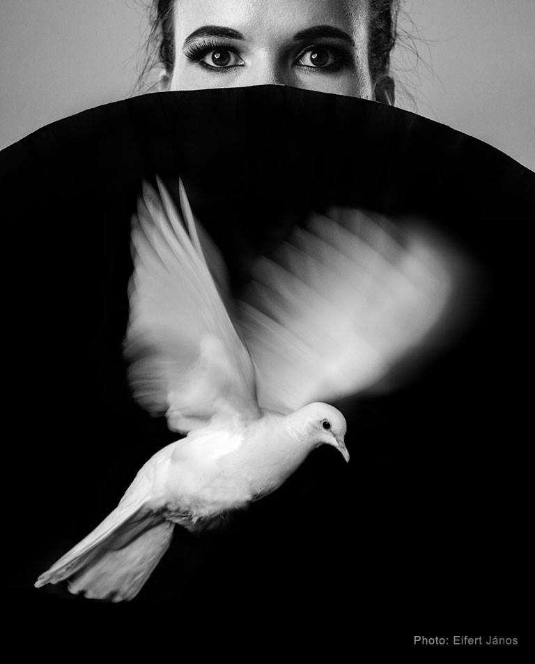 A fekete-fehér fényképezés mágiája 01.