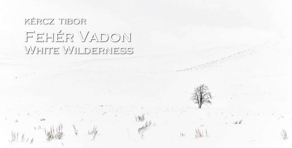 Kércz Tibor: Fehér Vadon – Természetfotó kiállítás megnyitó