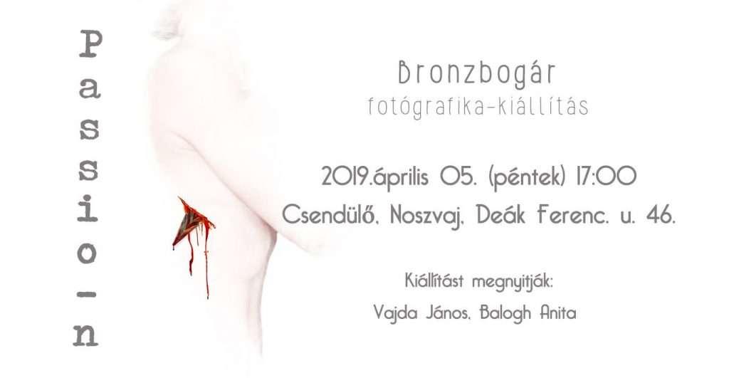 """Bronzbogár """"Passio-n"""" című fotografika kiállítás megnyitója"""
