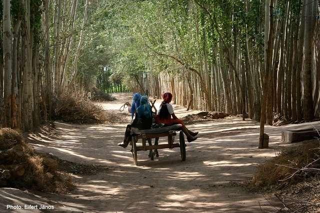hazafelé Xinjiang Kína