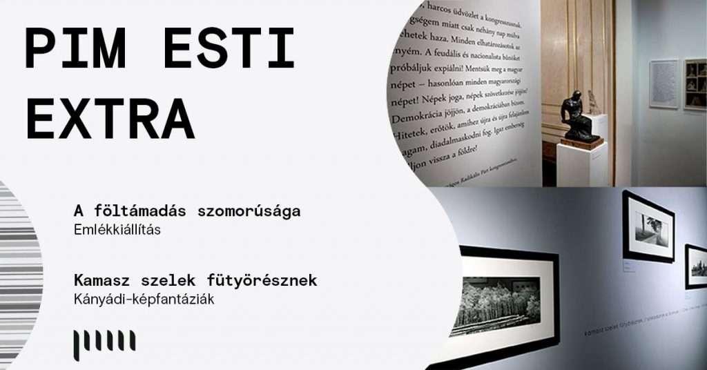 PIM Esti Extra // rendhagyó vezetések kiállításainkban