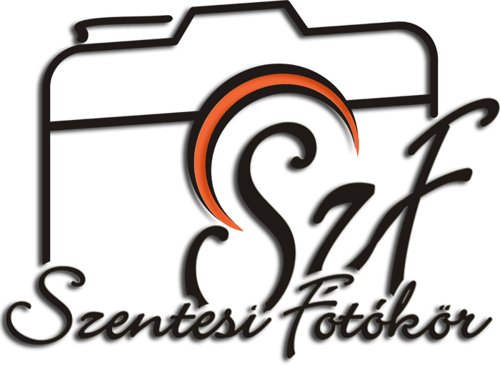 logo fekete