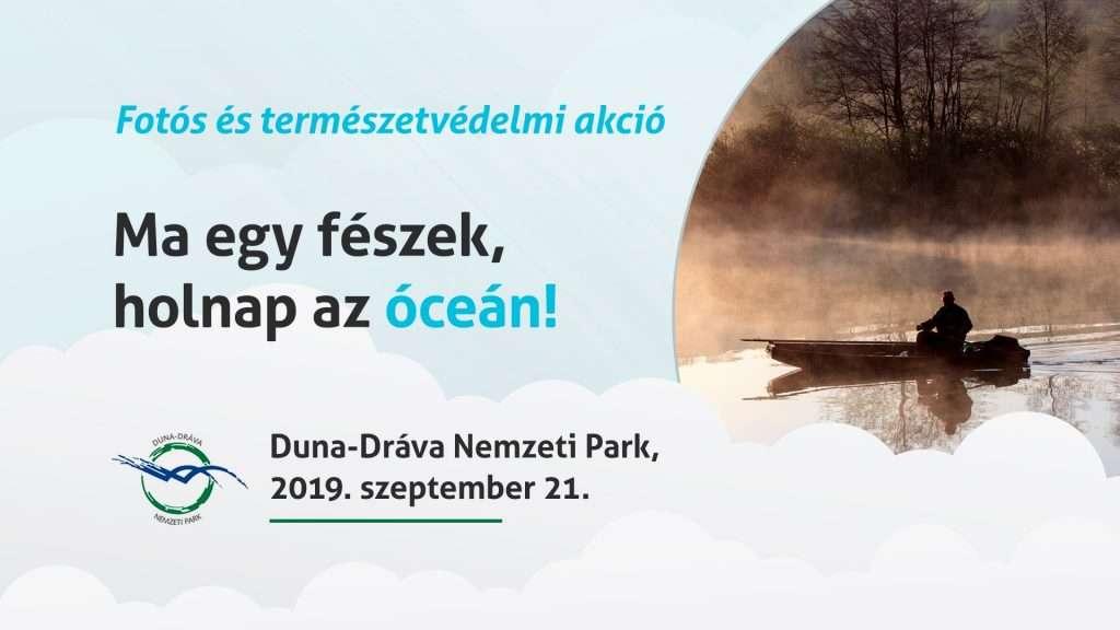 Ma egy fészek, holnap az óceán!