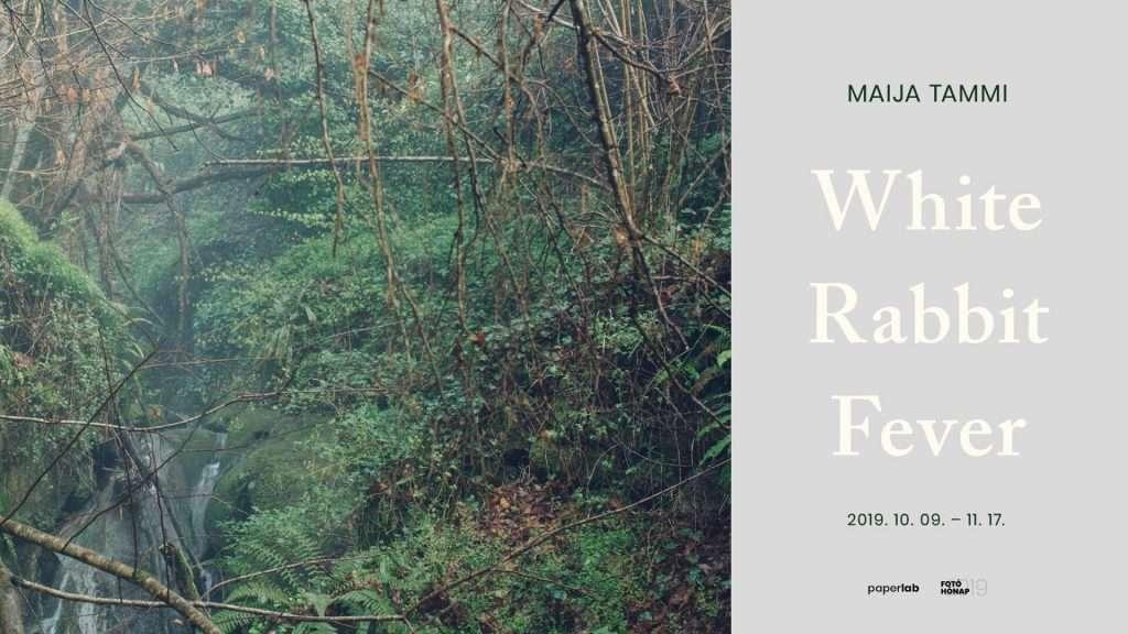 Maija Tammi: White Rabbit Fever