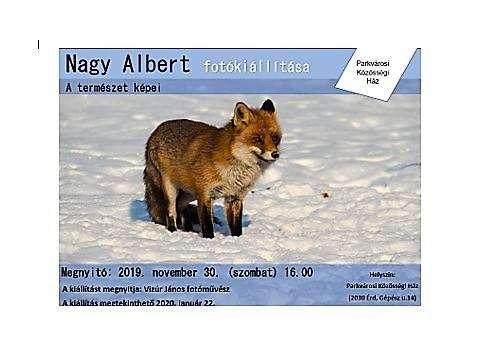 Nagy Albert fotókiállítása – A természet képei