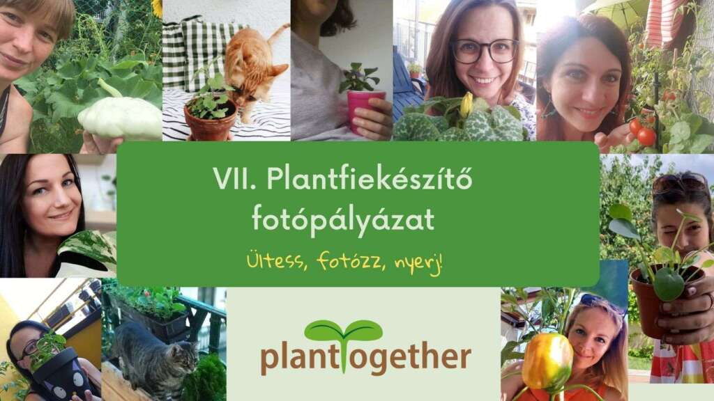VII. Plantfiekészítő fotópályázat